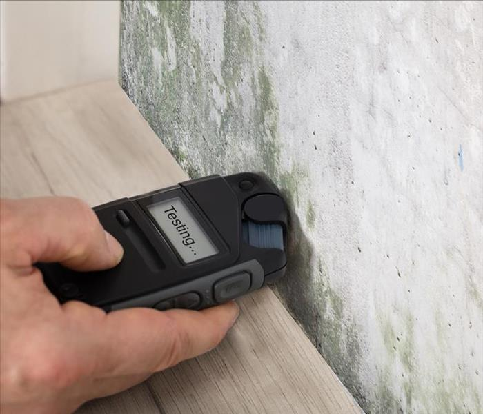 Mold Remediation Mold Damage Spreads Easily within Pleasant Hill Homes