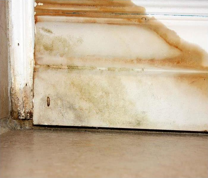 Water Damage Long-Term Water Damage SERVPRO Finds Regularly In Pleasant Hill