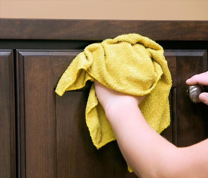 Mold Remediation Why Mold Damage Affects Homes in Pleasant Hill