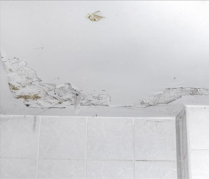 Mold Remediation Mold Damage Remediation Is Vital for Pleasant Hill Residents